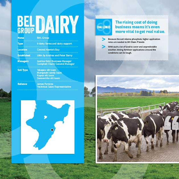 Creating the best dairy on earth display.